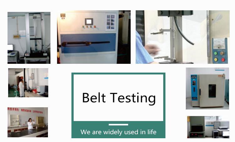 4.jinjiu v belt testing.jpg